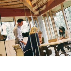 Procesvertrouwen in samenwerkingsverbanden: de 4 domeinen