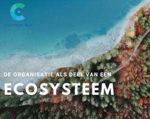 De organisatie als onderdeel van een ecosysteem